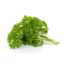 Parsley (Curly)